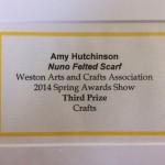 Third Prize Winner